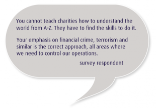 Survey respondent quote